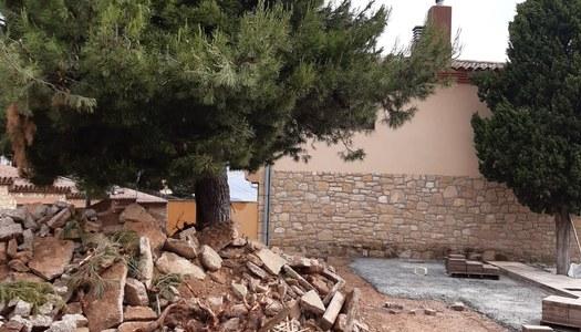 Visita de l'arquitecta del Consell Comarcal per fer l'informe sobre el pi de la plaça del cementiri vell.